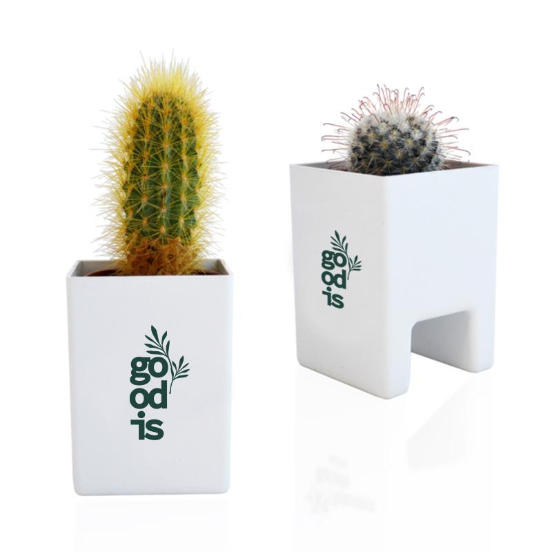 Cadeau d'entreprise végétal - Le Pot ' Ordi personnalisable blanc