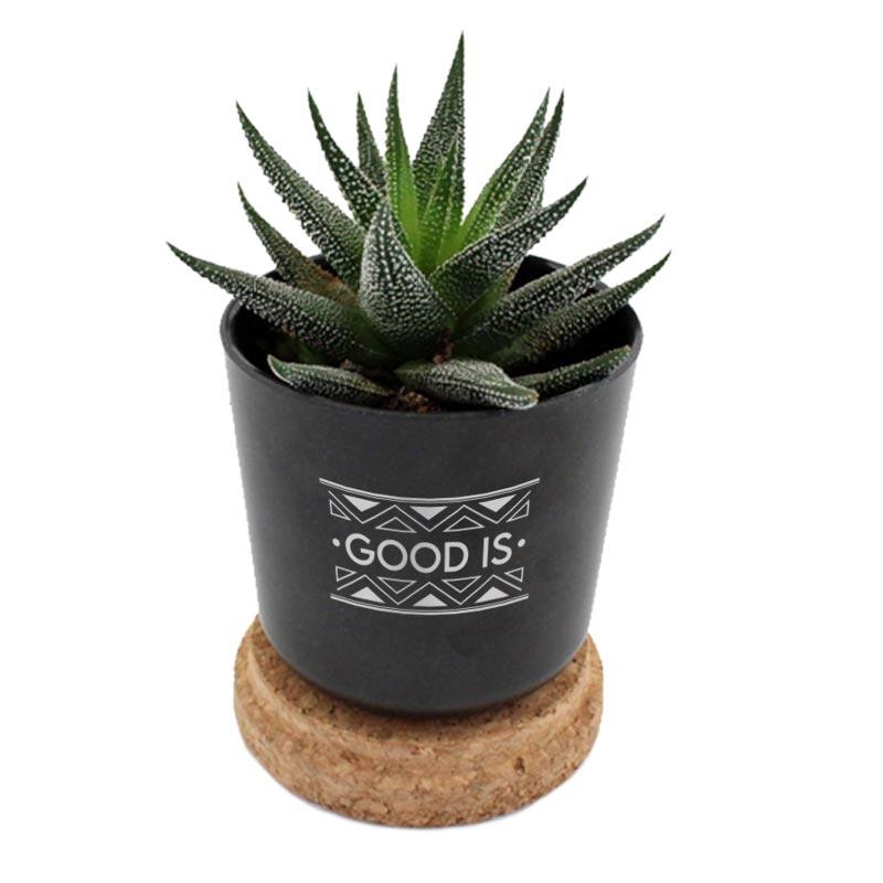 Mini plante dépolluante publicitaire en pot en bambou et couvercle en liège - Coloris noir
