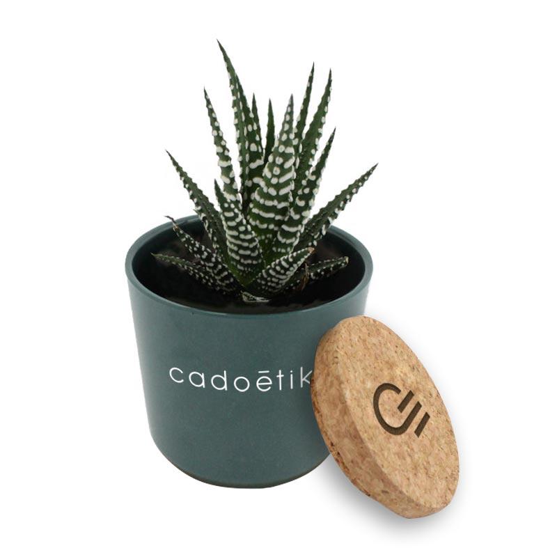 Mini plante dépolluante publicitaire en pot en bambou et couvercle en liège - Coloris bleu