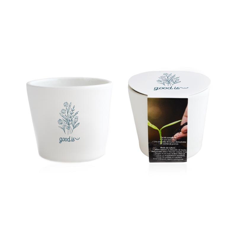 Kit de plantation pot céramique