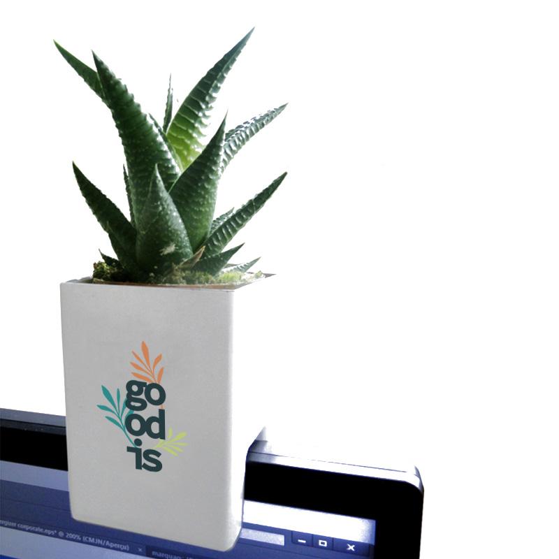 Plante publicitaire - Le Pot ' Ordi