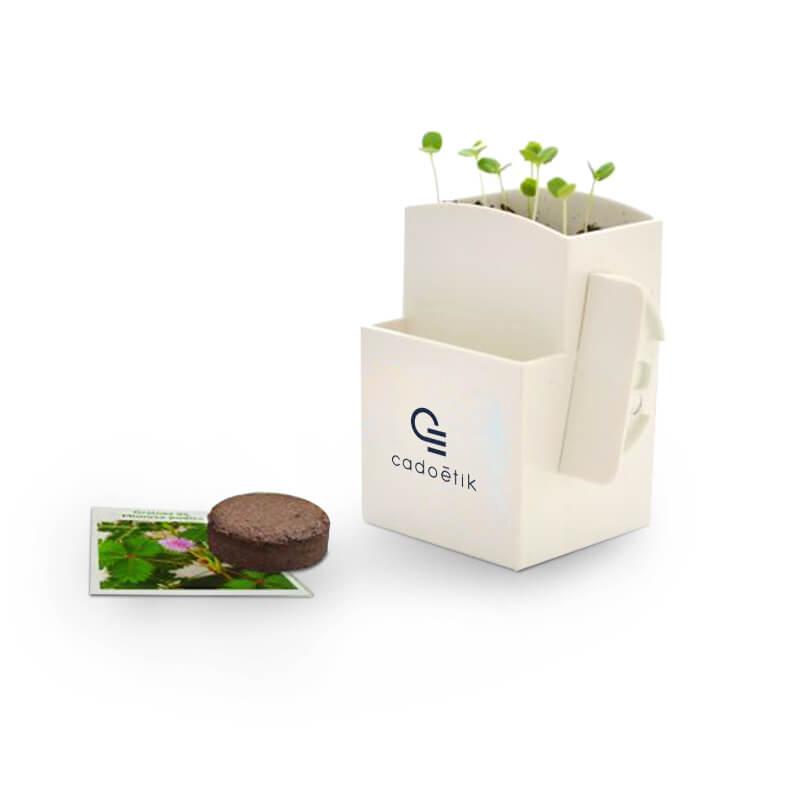 Cadeau végétal pour entreprise - La végétal-Box avec plante dépolluante