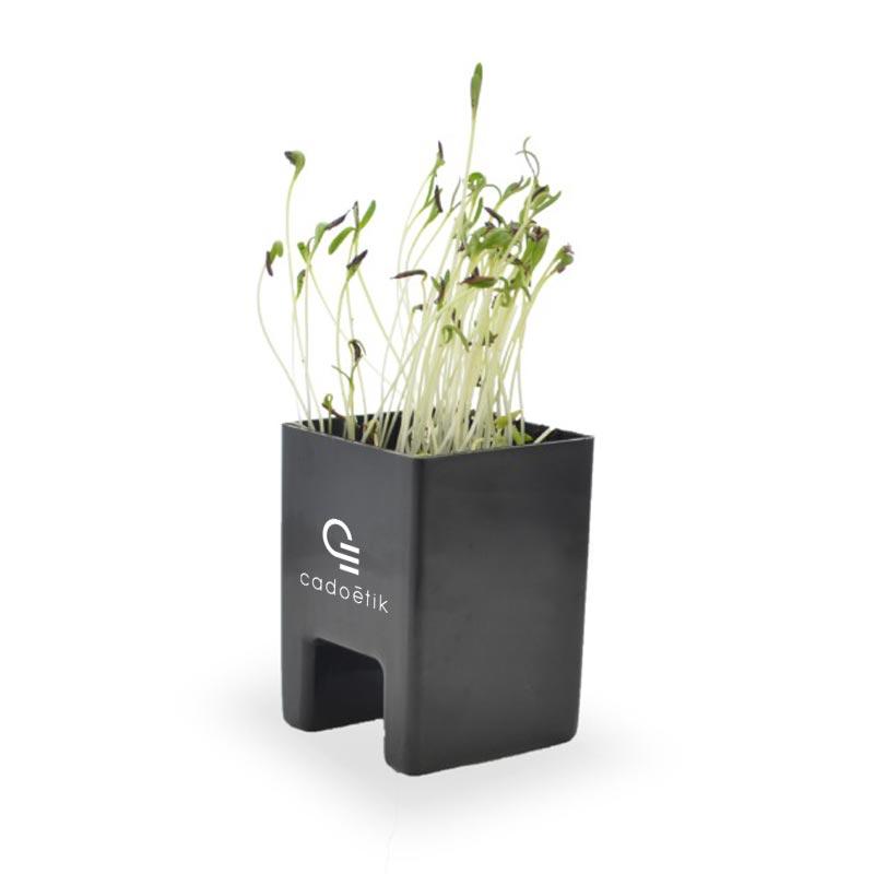 Goodies green - Le Pot Ordi végétal