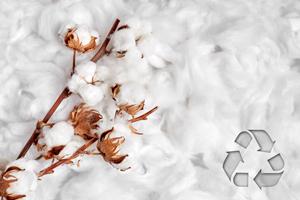 matière coton recyclé cadoetik