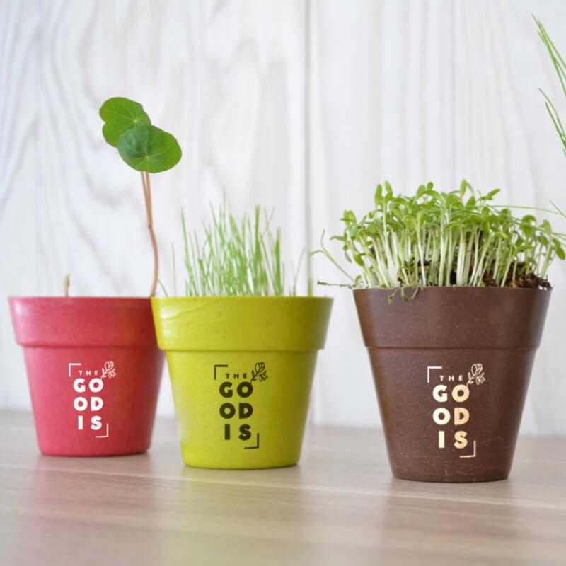 Goodies écologique - Kit de plantation pot biodégradable bambou