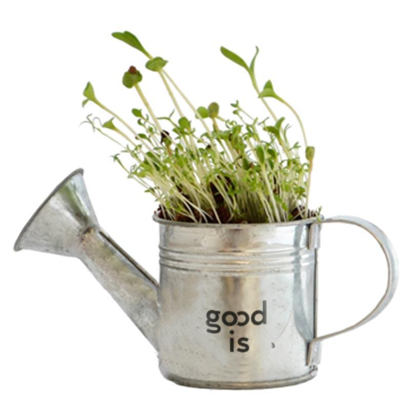 L'arrosoir à graines - goodies écologique