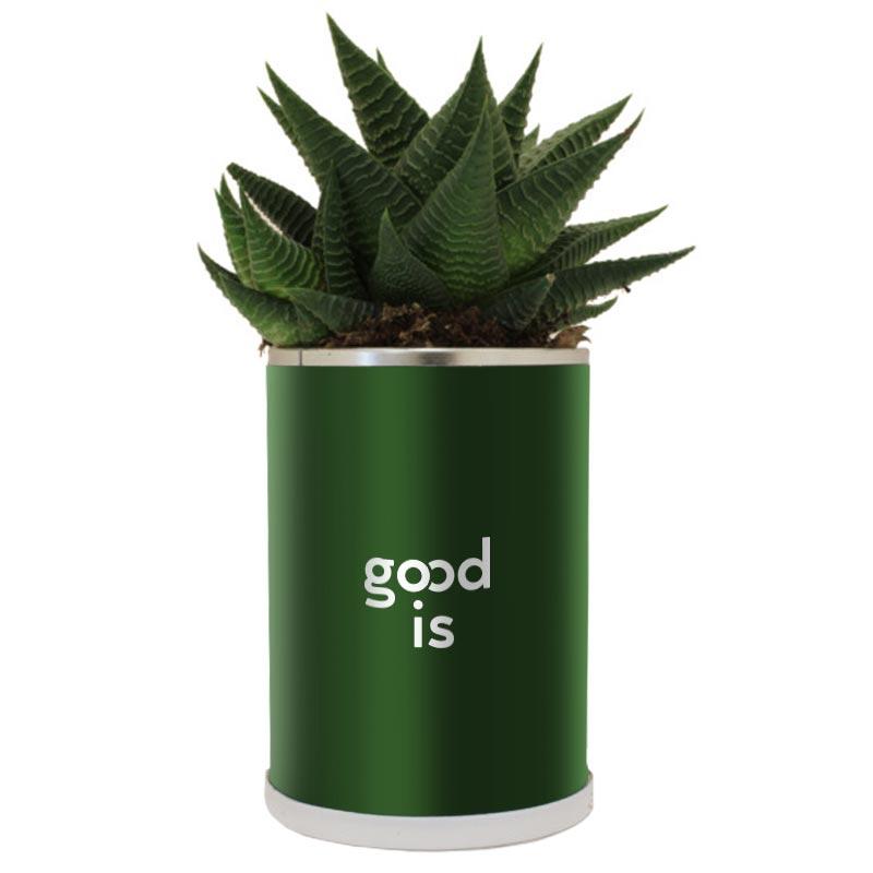 Cadeau publicitaire végétal - Canette à plante Cactus