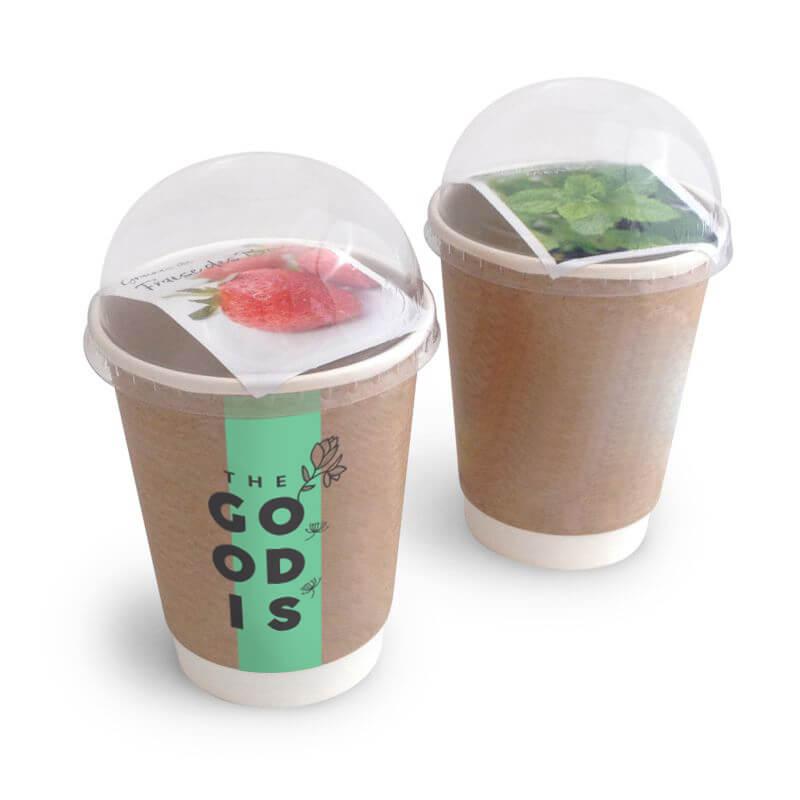Goodies écologique - Smoothie à graines Shaked