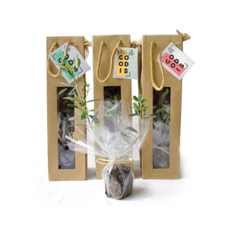 Plant arbre en sac kraft fenêtre Prestige - cadeau d'affaires