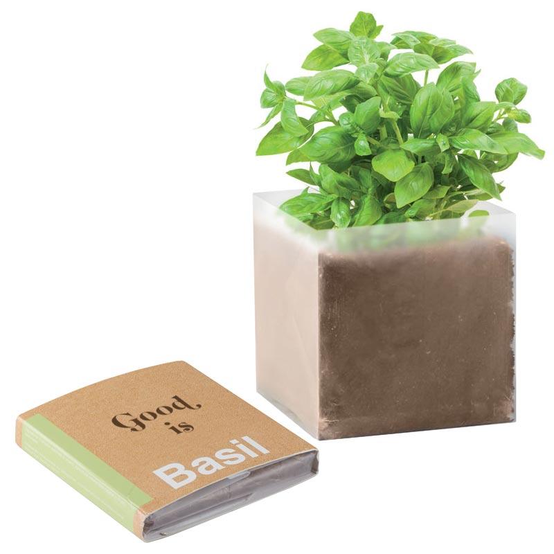 kit de plantation publicitaire - Substrat graines Basilic BASIL