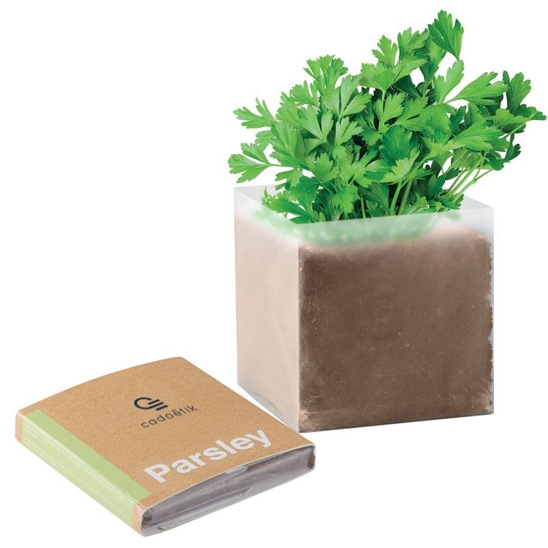 goodies plante - pot à graines publisitaire substrat Persil