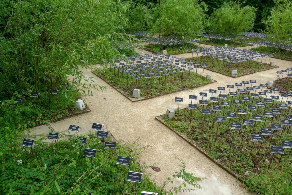 Etiquettes plantées au sol : évoque un cimetière
