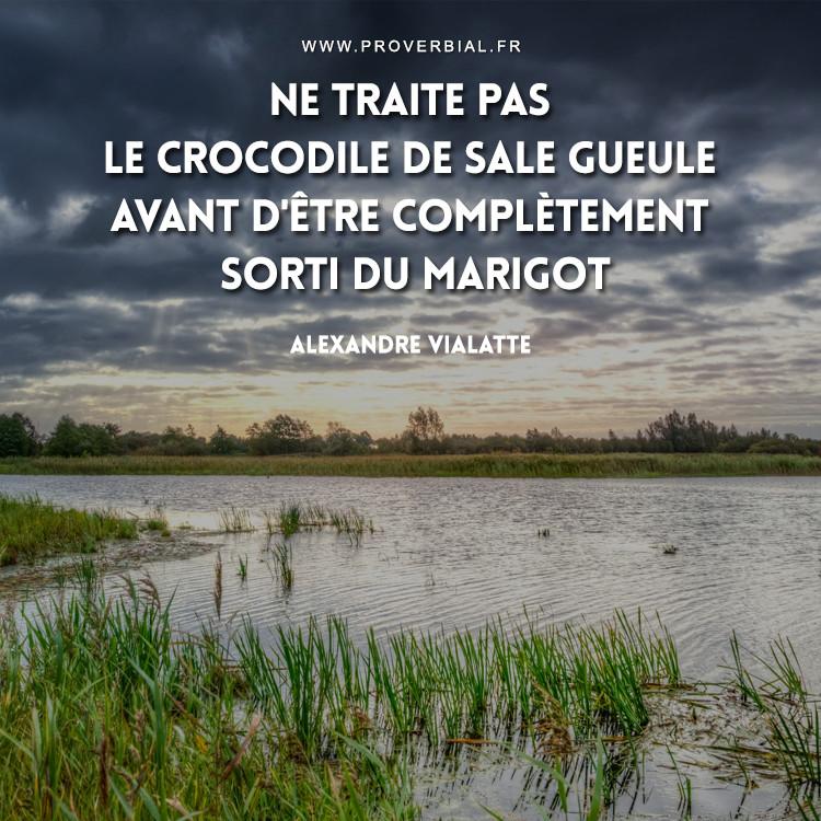 Ne traite pas le crocodile de sale gueule avant d'être complètement sorti du marigot.