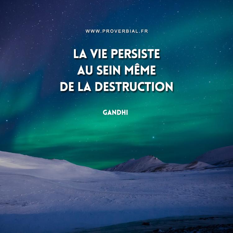 La vie persiste au sein même de la destruction.