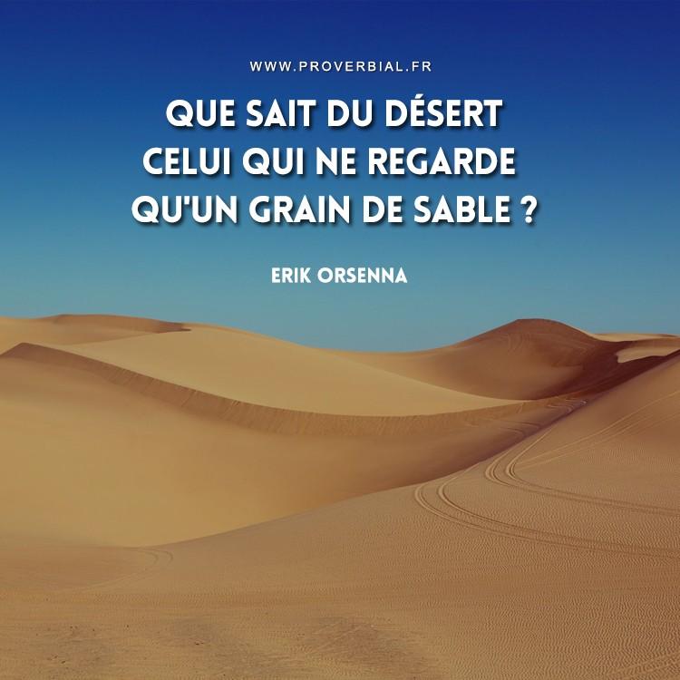 Que sait du désert celui qui ne regarde qu'un grain de sable ?