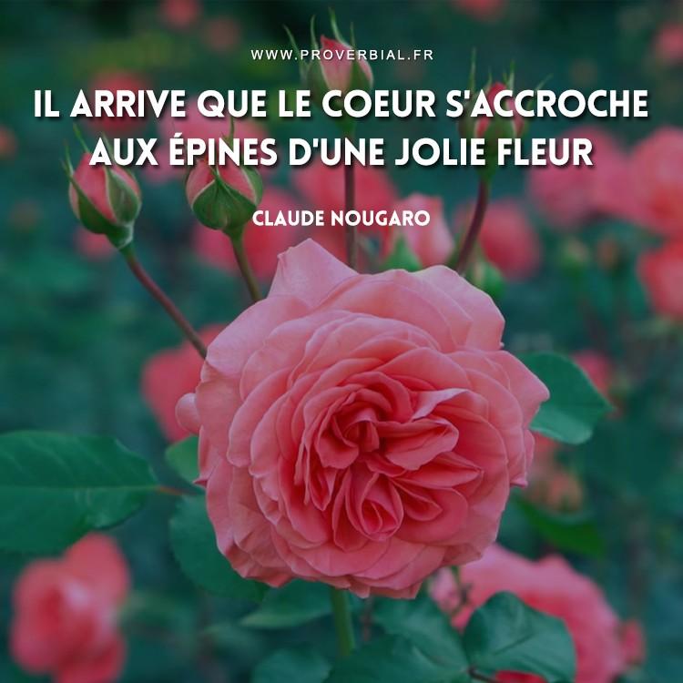 Il arrive que le coeur s'accroche aux épines d'une jolie fleur.