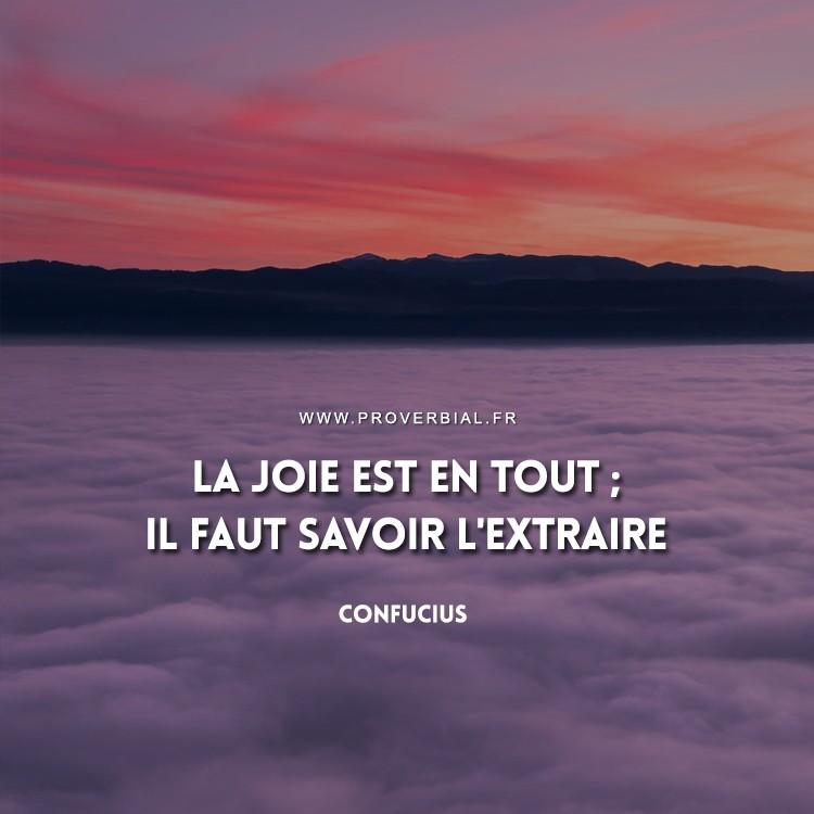 La joie est en tout ; il faut savoir l'extraire.
