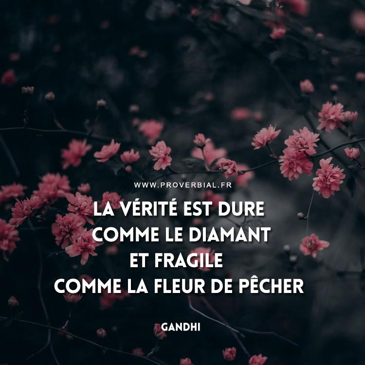 La vérité est dure comme le diamant et fragile comme la fleur de pêcher.