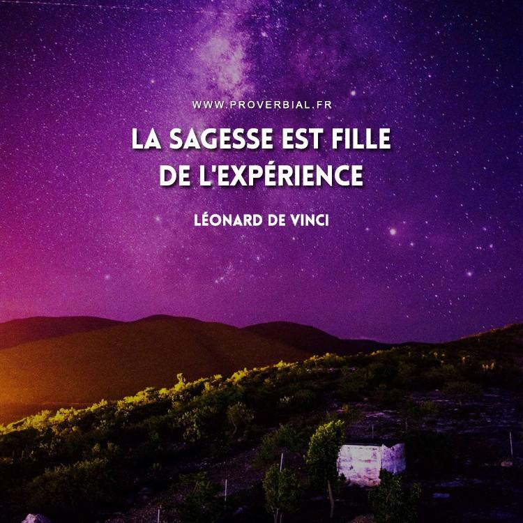 La sagesse est fille de l'expérience.