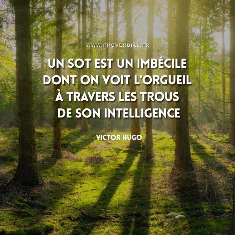 Un sot est un imbécile dont on voit l'orgueil à travers les trous de son intelligence.