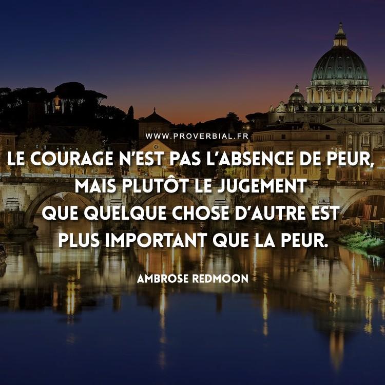 Le courage n'est pas l'absence de peur, mais plutôt le jugement que quelque chose d'autre est plus important que la peur.
