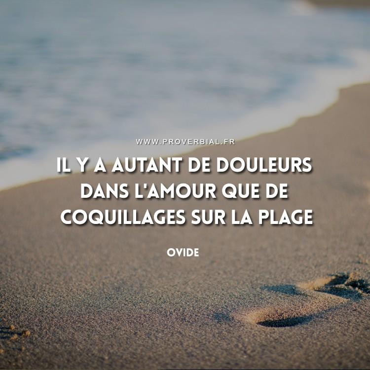 Il y a autant de douleurs dans l'amour que de coquillages sur la plage.