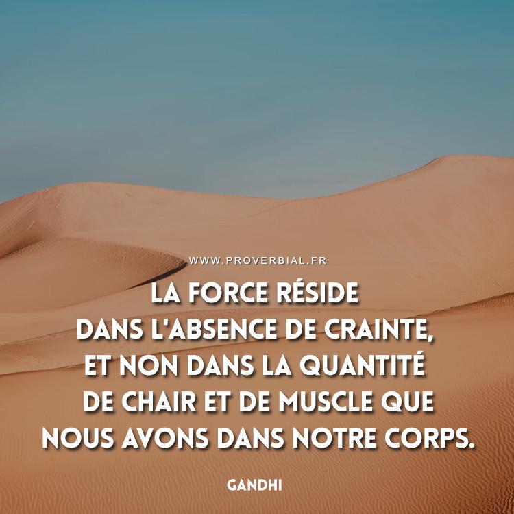 La force réside dans l'absence de crainte, et non dans la quantité de chair et de muscle que nous avons dans notre corps.