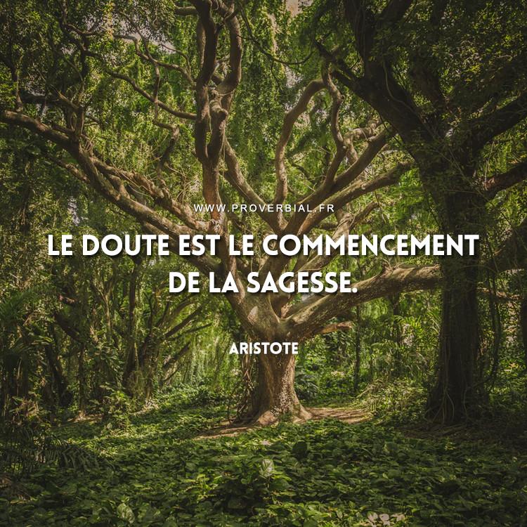Le doute est le commencement de la sagesse.