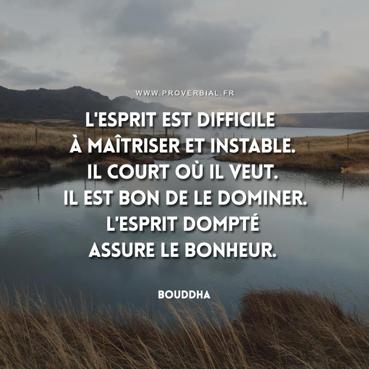 L'esprit est difficile à maîtriser et instable. Il court où il veut. Il est bon de le dominer. L'esprit dompté assure le bonheur.