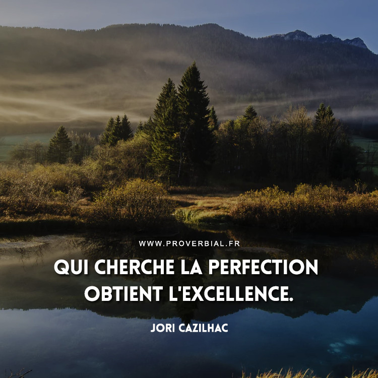 Qui cherche la perfection obtient l'excellence.