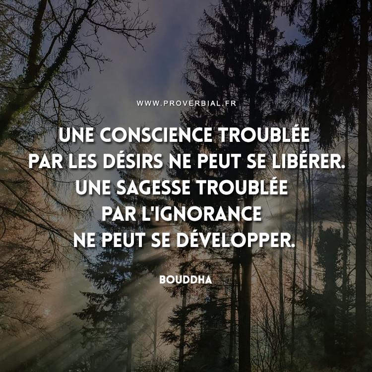 Une conscience troublée par les désirs ne peut se libérer. Une sagesse troublée par l'ignorance ne peut se développer.