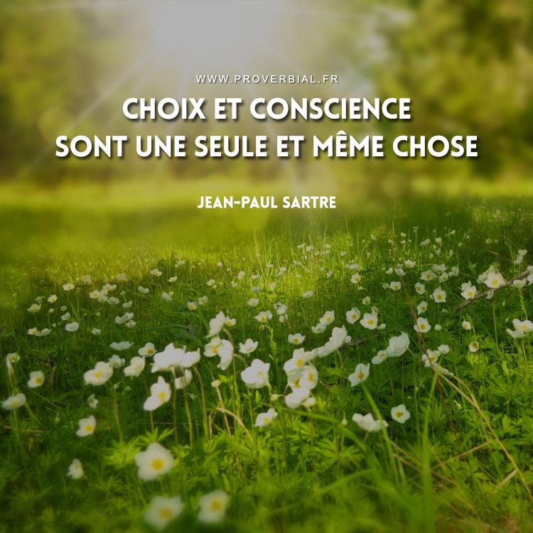 Choix et conscience sont une seule et même chose.