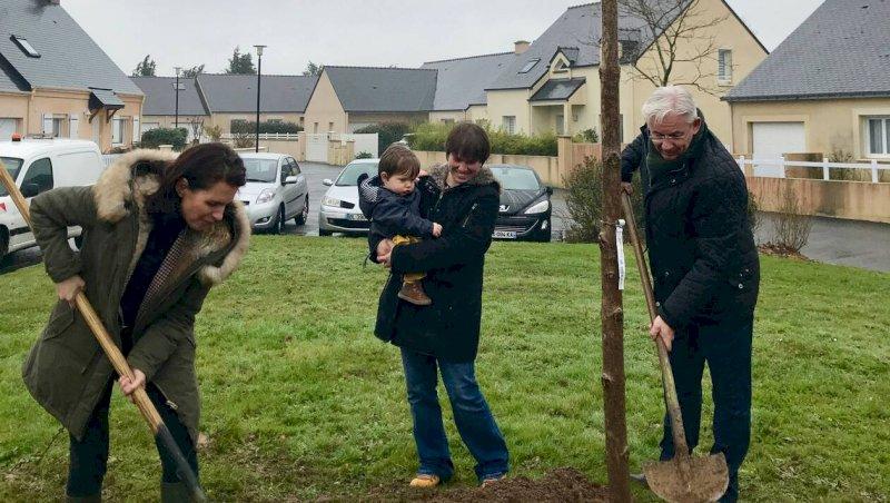 L'arbre du petit Camille, planté au square Jacques-Brel