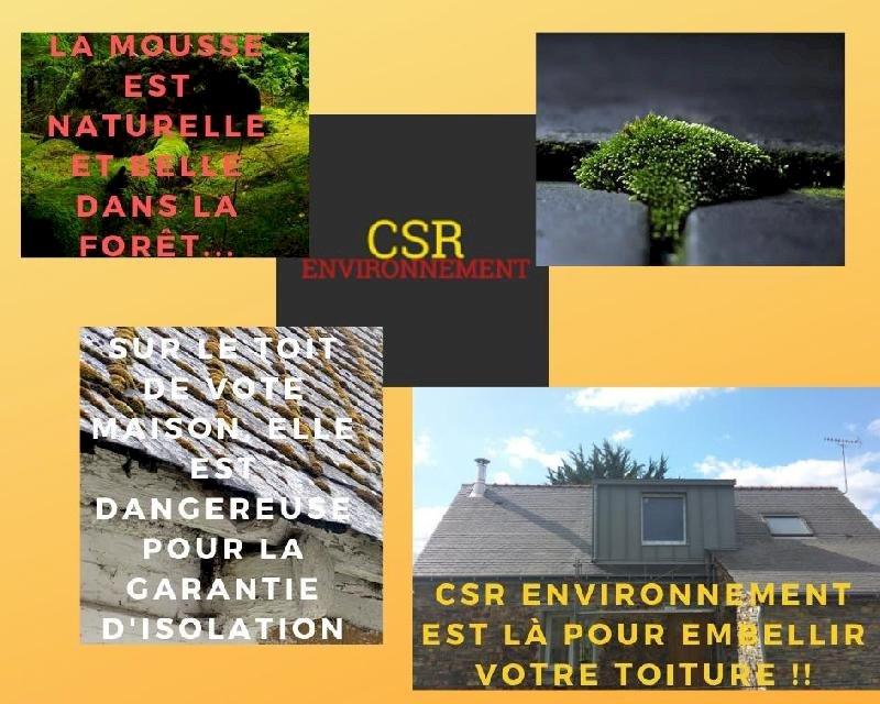 CSR Environnement de Blain vous parle de votre toit !