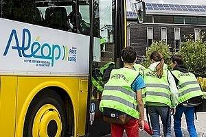Transports scolaires : point sur les gilets