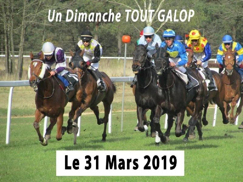 Réunion Hippique - 1er rendez-vous de l'année 2019!
