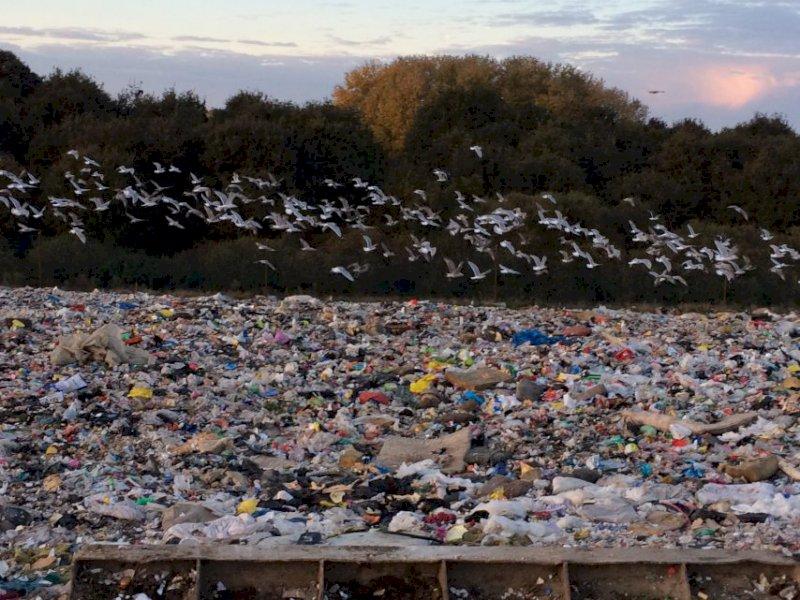 À Blain, trois semaines et 16 rendez-vous pour réduire ses déchets