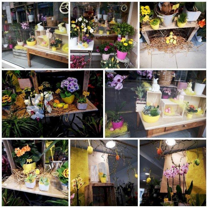 Magnifiques compositions fleuries à Alstroemeria à Blain