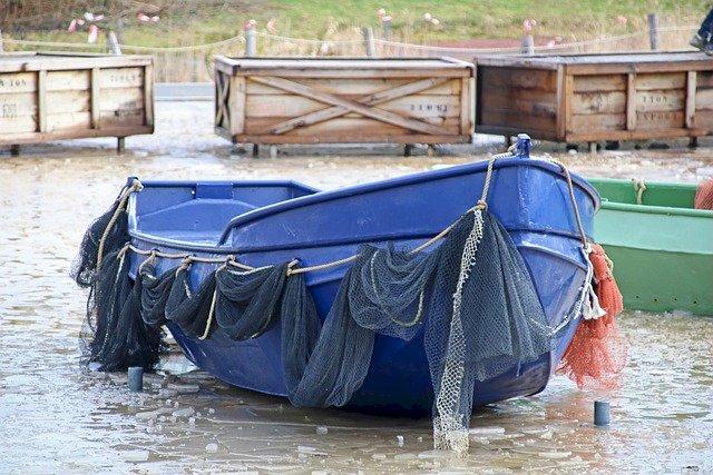 Demandes ou renouvellement des licences de pêche amateur