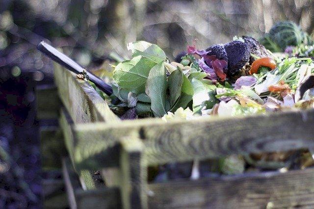 Pour jardiner au naturel, trois aides sont à votre disposition !