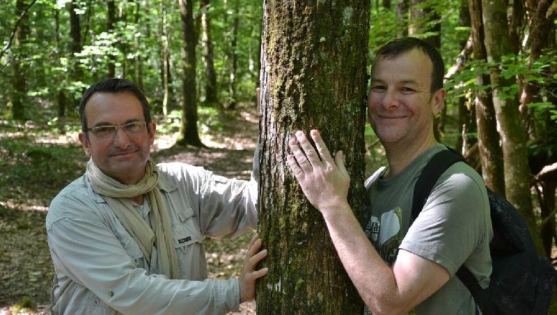 Le Gâvre. Randonnées de chant sensoriel en forêt