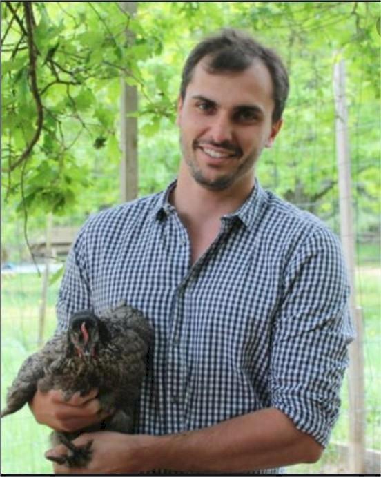 Loire-Atlantique : et si vous achetiez des poules pondeuses destinées à l'abattoir ?