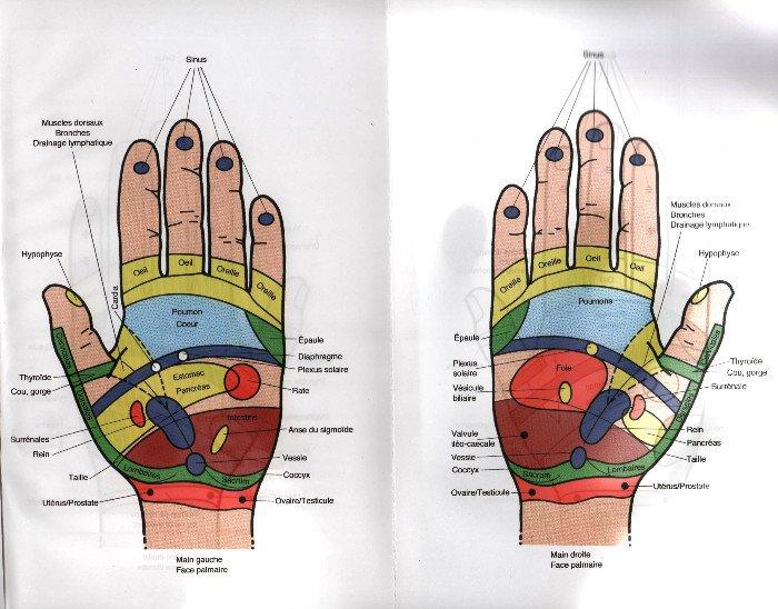 Séance de reflexologie des mains