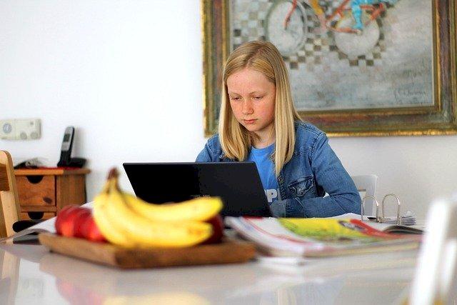 Collégiens : stages de découverte en ligne !