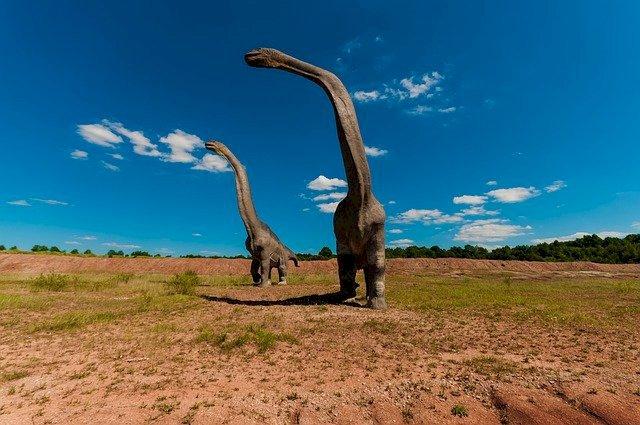 Patrimoine Pays de la Loire : des traces de dinosaures