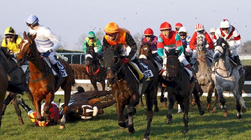 Loire-Atlantique : deux cavaliers blessés dans une spectaculaire chute sur l'hippodrome de Blain