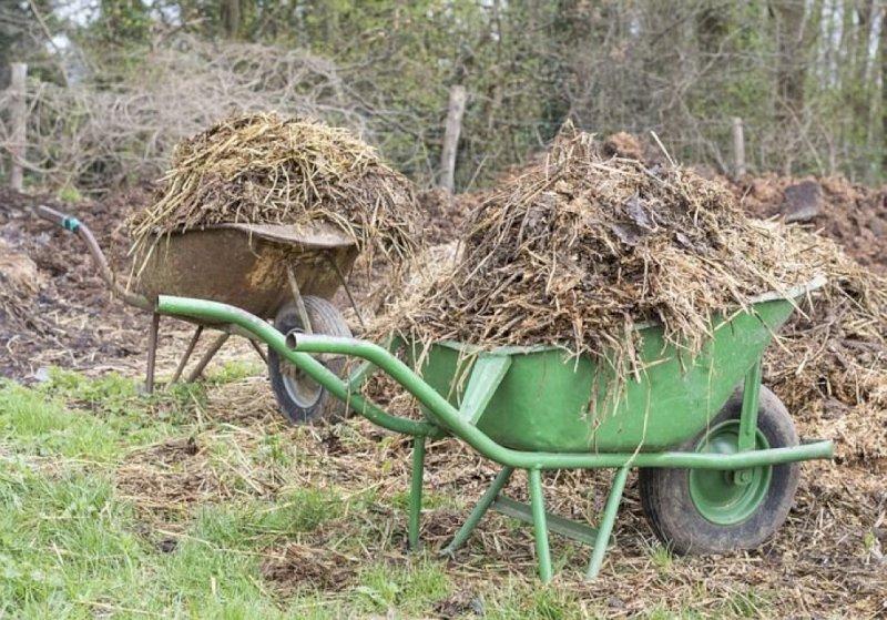 Les déchèteries d'Erdre et Gesvres rouvrent pour les déchets verts