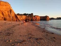 Le Sénat vote pour la réouverture des plages dès le lundi 11 mai