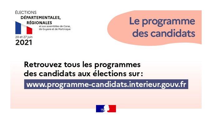 Élections départementales et régionales : retrouvez tous les programmes des candidats