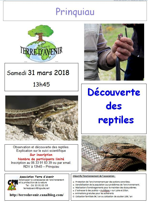 Decouvertes des reptiles